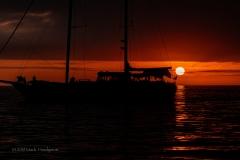 Punta_Albemarle-36101