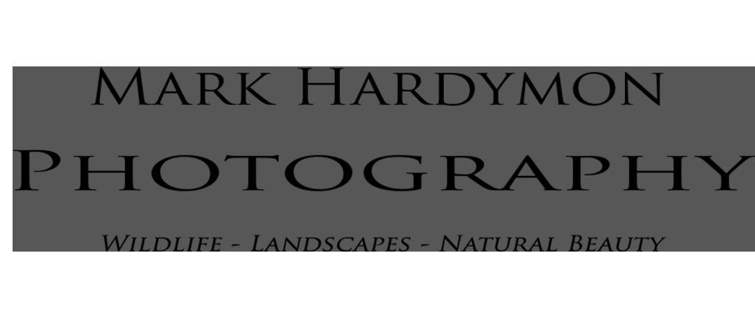 mark hardymon photography