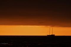 Punta_Albemarle-36091